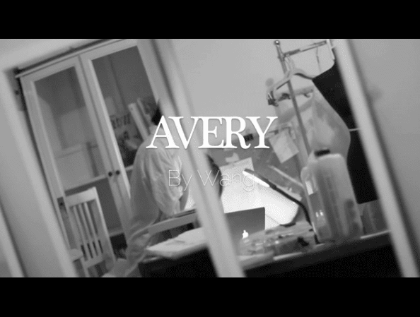 StartUp FASHION BreakThrough DESIGNER Label: AVERY