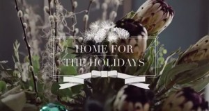 4 Holiday Marketing Campaigns to Inspire Emerging Designer Marketing Ideas